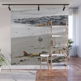Greater Yellowlegs Strolling on the Beach Wall Mural