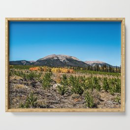 Treeline Mountain Top // Long Range Landscape Photograph Rustic Forest Fall Colors Serving Tray