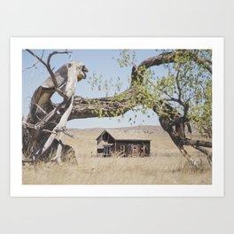 Abandoned: South Dakota 6507 Art Print