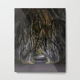 Dark Hedges Alley Metal Print