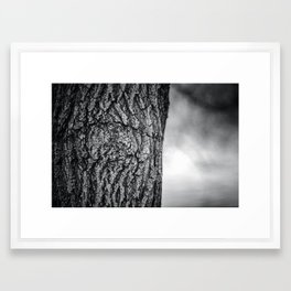 Natures eye Framed Art Print