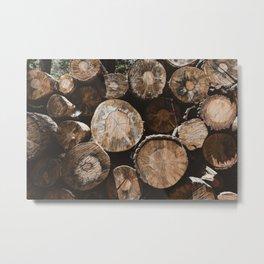 Yosemite Logging Metal Print