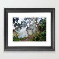 Jungle in Royal Chitwan National Park, Nepal. Framed Art Print