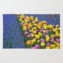 Muscari and tulips Rug