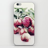 tulips iPhone & iPod Skins featuring Tulips by Sirka H.