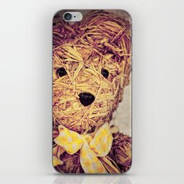 My Teddy Bear iPhone Skin