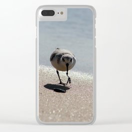 Sandpiper bird on the seashore Clear iPhone Case