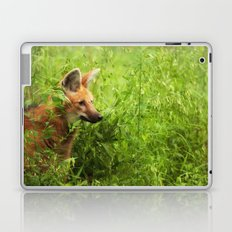 Peeking Out Laptop & iPad Skin
