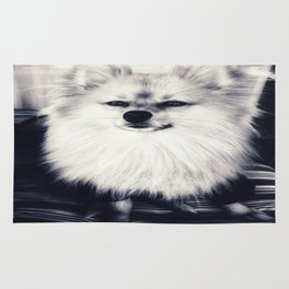 Black and White Pomeranian Rug