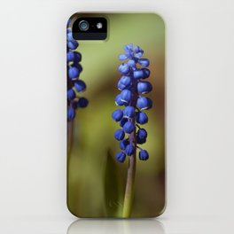 spring lavender iPhone Case