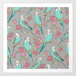 Budgie Birds With Blossom Flowers on Grey Art Print