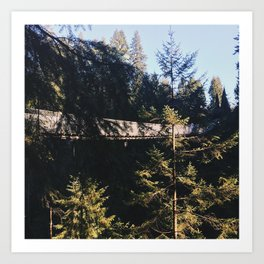 Up in the trees: Adventure is out there.  Art Print
