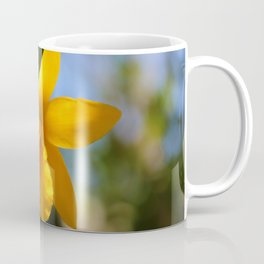 Yellow Orchid Coffee Mug