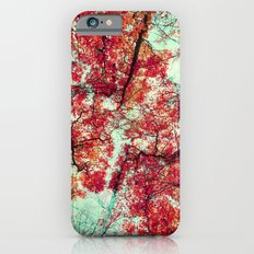 Candied Fall Slim Case iPhone 6