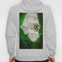 The Bumble Bee Hoody