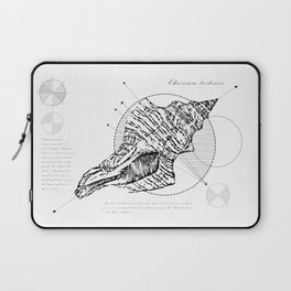 Geometry of a Charonia tritonis Laptop Sleeve