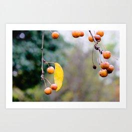 Fall is over wabi-sabi Art Print