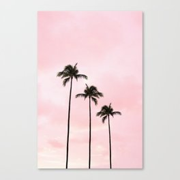 Palm Tree Photography Peach | Blush Pink | Millennial Pink | Miami Canvas Print