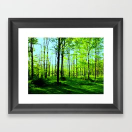 Sky Blue Morning Forest Framed Art Print