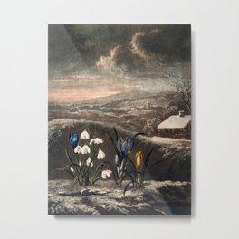 Robert John Thornton - The Snowdrops Metal Print
