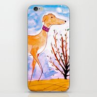greyhound iPhone & iPod Skins featuring Greyhound by Caballos of Colour