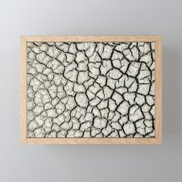 Parched land in the Regional Natural Park of Camargue Framed Mini Art Print