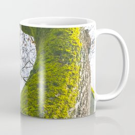 Abstract details of acacia tree trunk Coffee Mug