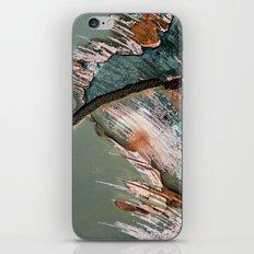 Corrosion Colors II iPhone & iPod Skin