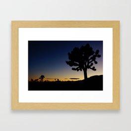 Late night - Joshua tree Framed Art Print