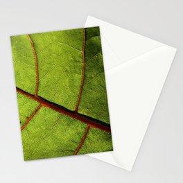 Leaf Veins II Stationery Cards