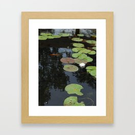 Koi and Water Lillies 2 Framed Art Print