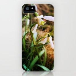 fragile iPhone Case