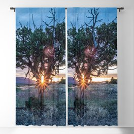 Sun Tree Hammock // Grainy Night Sunset Rays Hiking Landscape Photograph Wilderness Beauty Blackout Curtain