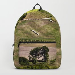 French GREEN Summer Field Backpack