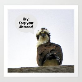 Osprey with a Warning About Distance Art Print