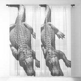 Alligators Love to Swim Sheer Curtain