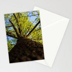 Upward to the canopy Stationery Cards