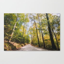 Forest Road - Muir Valley, Kentucky Canvas Print