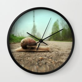 Snail on the road Wall Clock