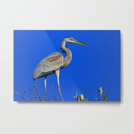 Where My Little Piece of Heaven Lives Metal Print