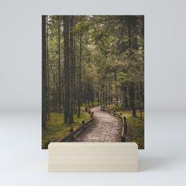 Pathway in the woods.    Latvian Forests.    Līgatne, Latvia.    MadaraTravels Mini Art Print