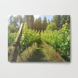 Wine About It Metal Print