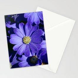 Blue Daisy Close Up Stationery Cards