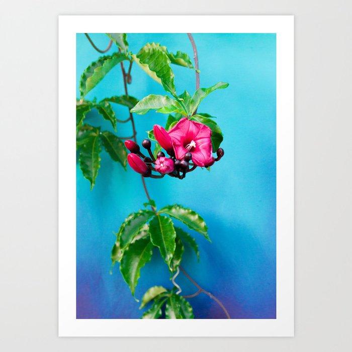 Tropical Blue 4 Art Print