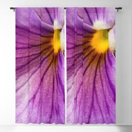 Purple Pansy Flower Close-up #decor #society6 #buyart Blackout Curtain