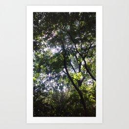 Nature Nurture (trees) Art Print