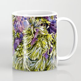 Bolinas Tide Pool Coffee Mug