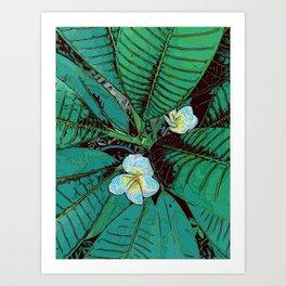 Plumeria Graphic Design Art Print