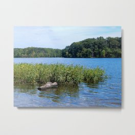 Burke Lake beauty Metal Print