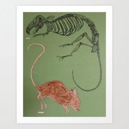 Dead Mou 5 Art Print